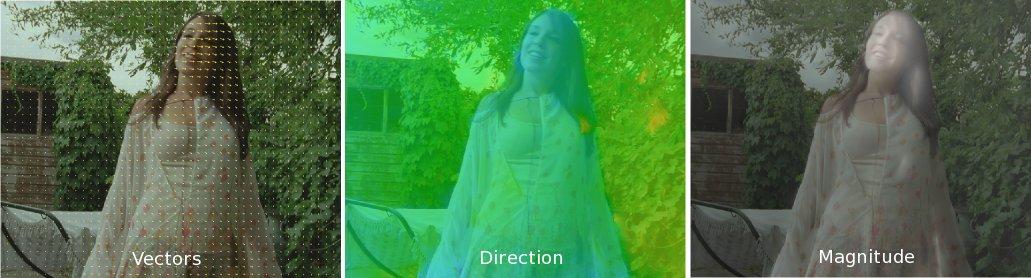 Optical Flow Direction Python